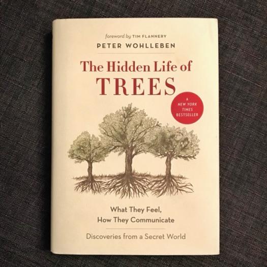 Hidden Life of Trees